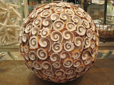 Shell Ball at Candy's Cottage