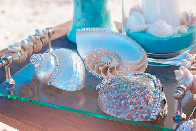 A chambered nautilus, an abalone and a pearlized turbo shell are embellished with Swarovski crystals to add some shine and sparkle to every table!